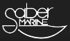 Saber Logo